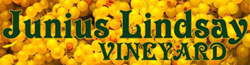 Junius Lindsay Vineyard Logo