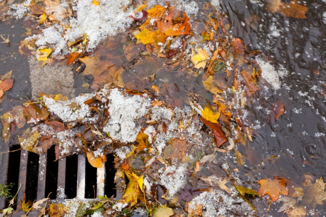 stormwater leaves drain